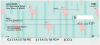 Wading Flamingos Personal Checks | ANI-011