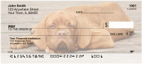 Majestic Mastiff Personal Checks | DOG-41