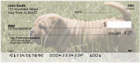 Shar Pei Personal Checks | DOG-48