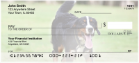Bernese Mountain Dogs Personal Checks | DOG-93