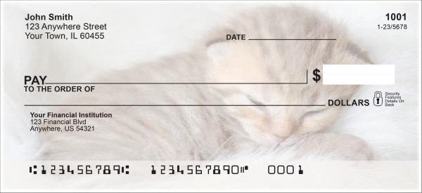 Sleepy Kittens Personal Checks | ANI-018